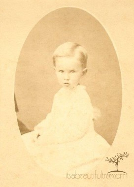 Carte De Visite Of My Great Grandfather As A Baby Most Likely In 1872 At The Left You Can See Small Piece Sleeve And His Back On